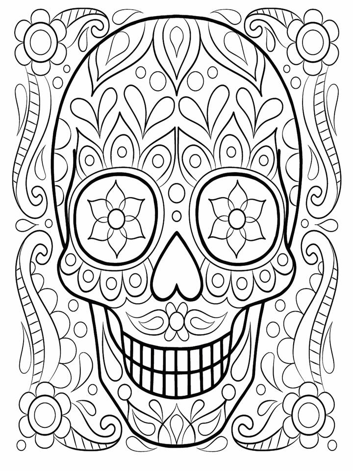 Stock Illustration Doodles Design Dragonfly Tattoo Design Element T Shirt Graphic Adult Coloring Book Pages Stock Image76340445 likewise Mandala Rose Coloring Pages moreover 16126 Letter V Alphabet Coloring Pages also Skylander Giant Coloring Pages moreover Snowflake Coloring Pages. on mandala printable sheets