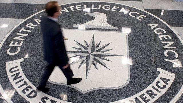 Smartatibhi-stole-information-from-CIA-WikiLeaks