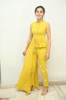 Taapsee Pannu looks mesmerizing in Yellow for her Telugu Movie Anando hma motion poster launch ~  Exclusive 130.JPG