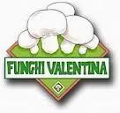 http://www.funghivalentina.it/
