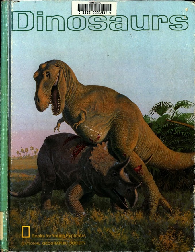 Vintage Dinosaur Art: Dinosaurs (Books for Young Explorers)