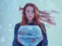 """Resenha: """"Meu Inverno em Zerolândia"""" -   Paola Predicatori"""