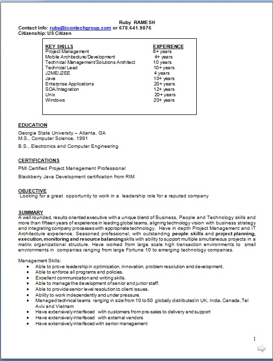 director resume pattern in word format free download