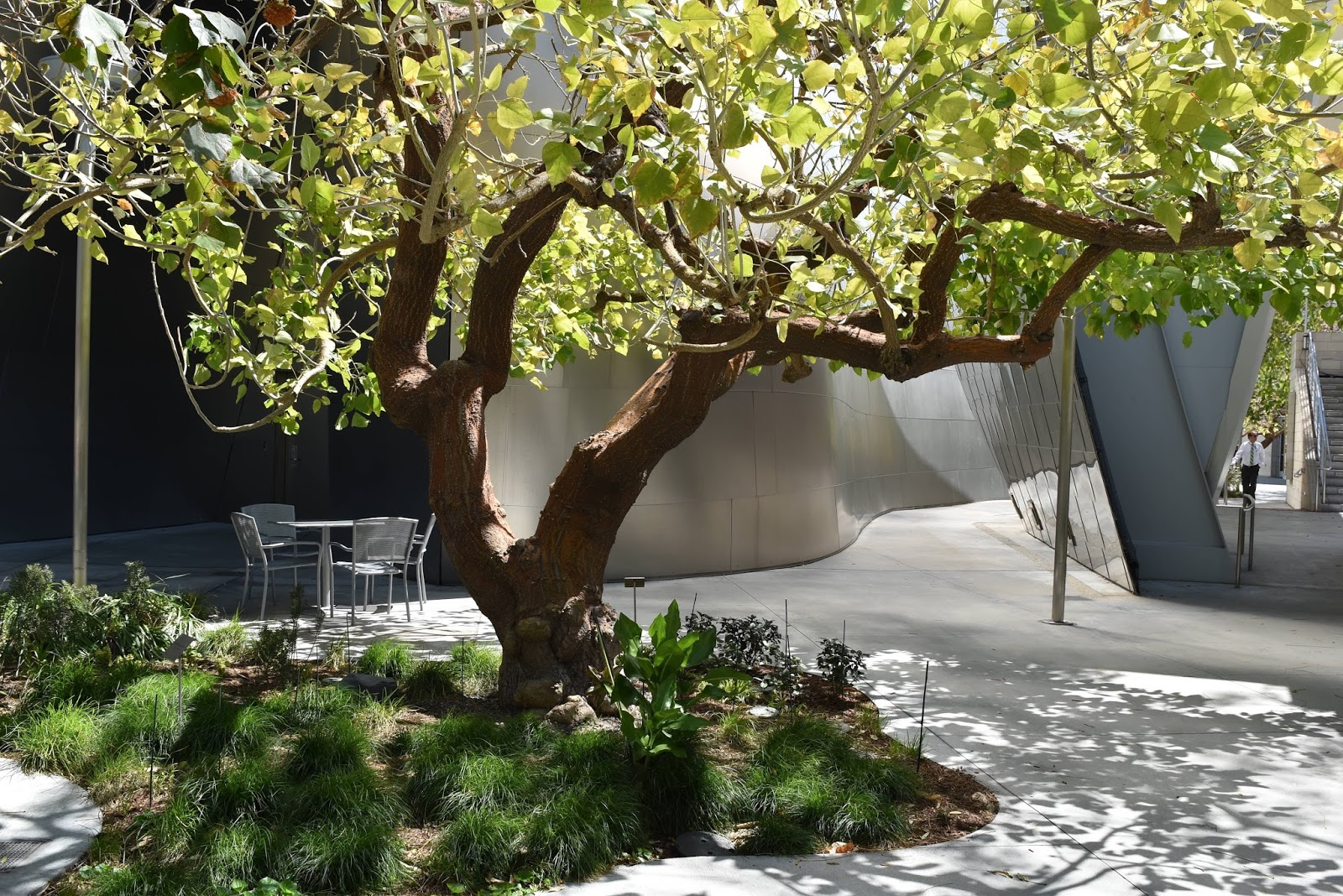 Disney Concert Hall Garden And A Bit Of The Broad