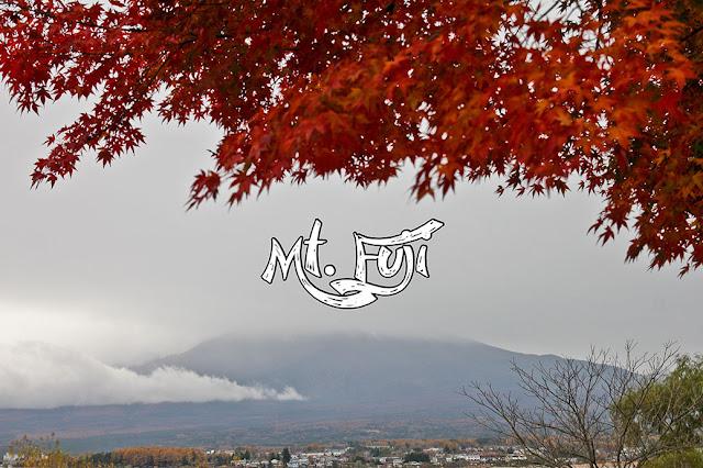 fuji travel