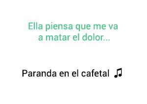 Significado de la canción Parranda En El Cafetal Jorge Celedón.