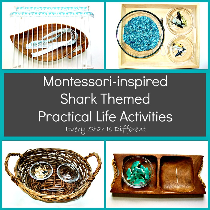 Montessori-inspired Shark Themed Practical Life Activities