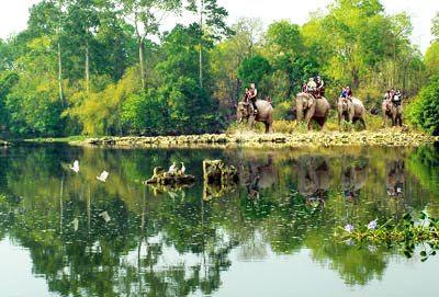 Vườn quốc gia Yok Don 2