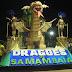 Carnaval 2019 tem o bloco SamBamBaia em Samambaia