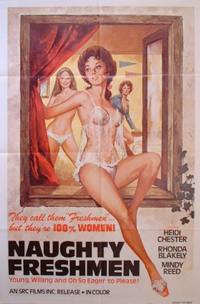 30 Vintage X-Rated Film Posters With Some Pretty Hilarious -9127