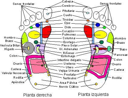 masaje de cuerpo completo con frotamiento de próstata