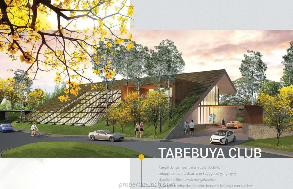 Tabebuya Club