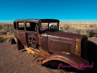 Petrified-Forest-National-Park-石化森林國家公園-Route-66