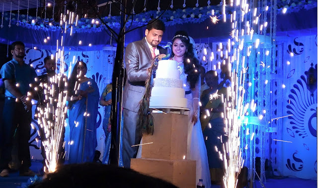 Meghna Vincent married  Don Tony wedding reception photos