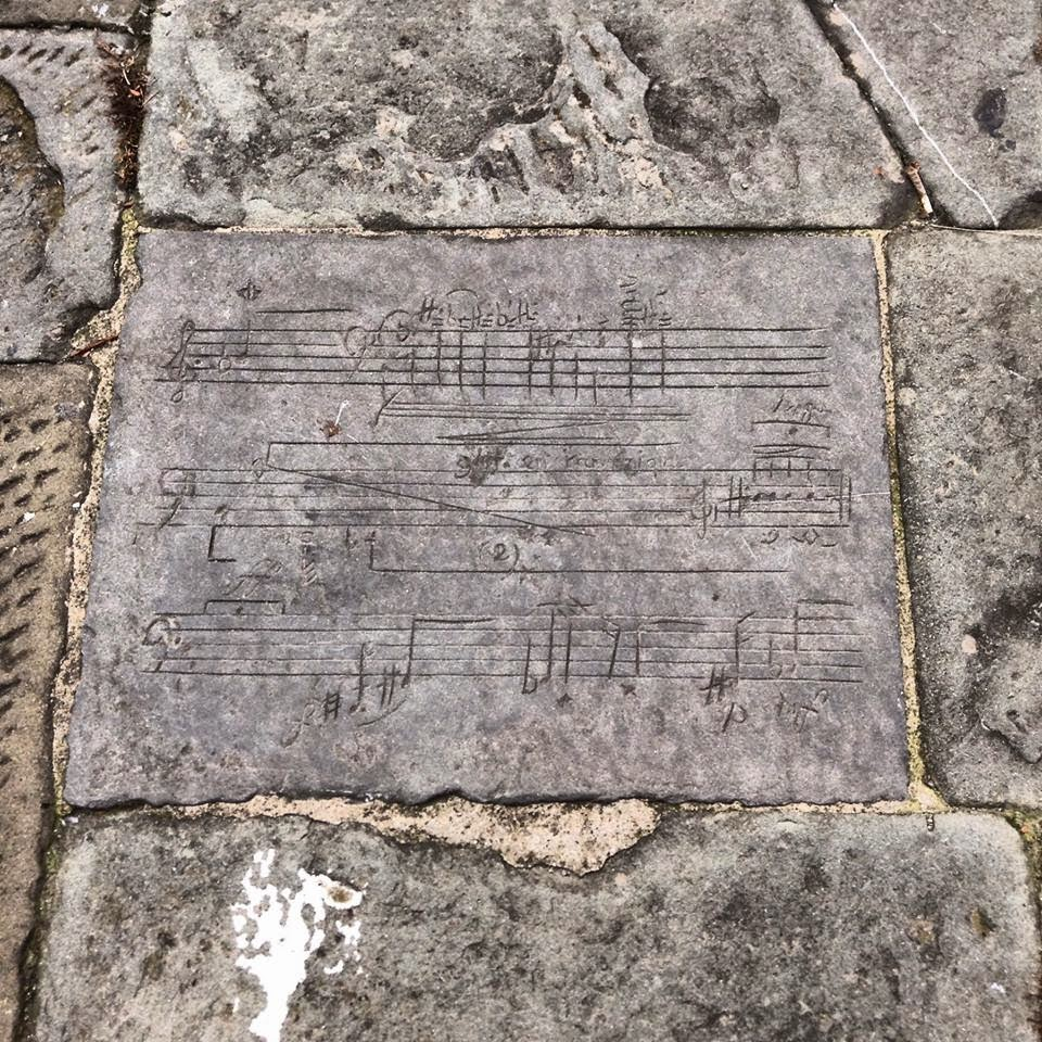 Siena: Tempo Zulu