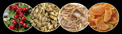 cara herbal menyembuhkan gastritis