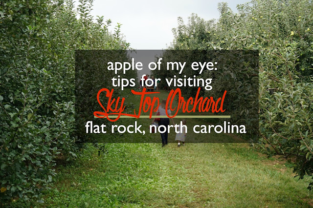 Apple of My Eye: Tips for Visiting Sky Top Orchard, Flat Rock, North Carolina | CosmosMariners.com