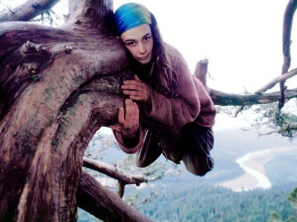 Julia Butterfly Hill, la ragazza chi visse 2 anni su una sequoia per evitare venisse abbattuta.