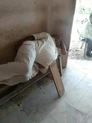 gordo, siesta, dormir, tabla, apoyo, tope