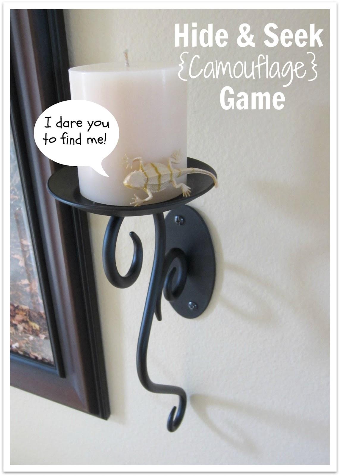 relentlessly fun deceptively educational hide seek camouflage game. Black Bedroom Furniture Sets. Home Design Ideas