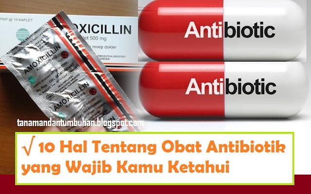 10 Hal Tentang Obat Antibiotik