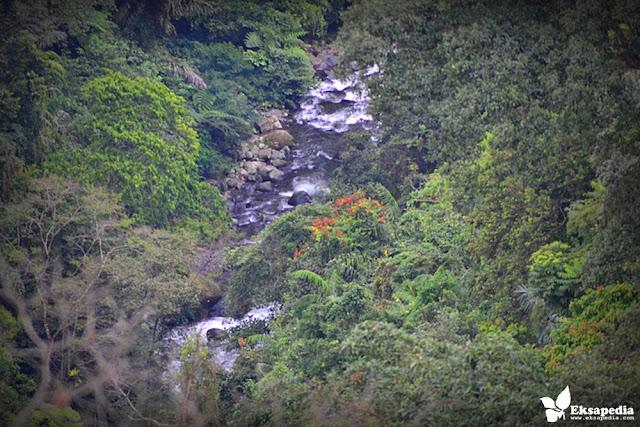 Aliran Sungai Rumah Pohon Batang