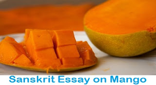 आम पर संस्कृत निबंध। Sanskrit Essay on Mango