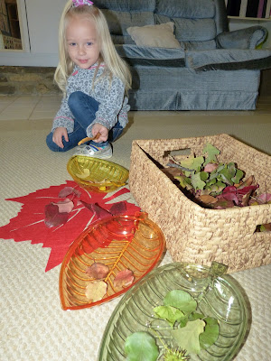 Awesome activities for celebrating fall and seasons