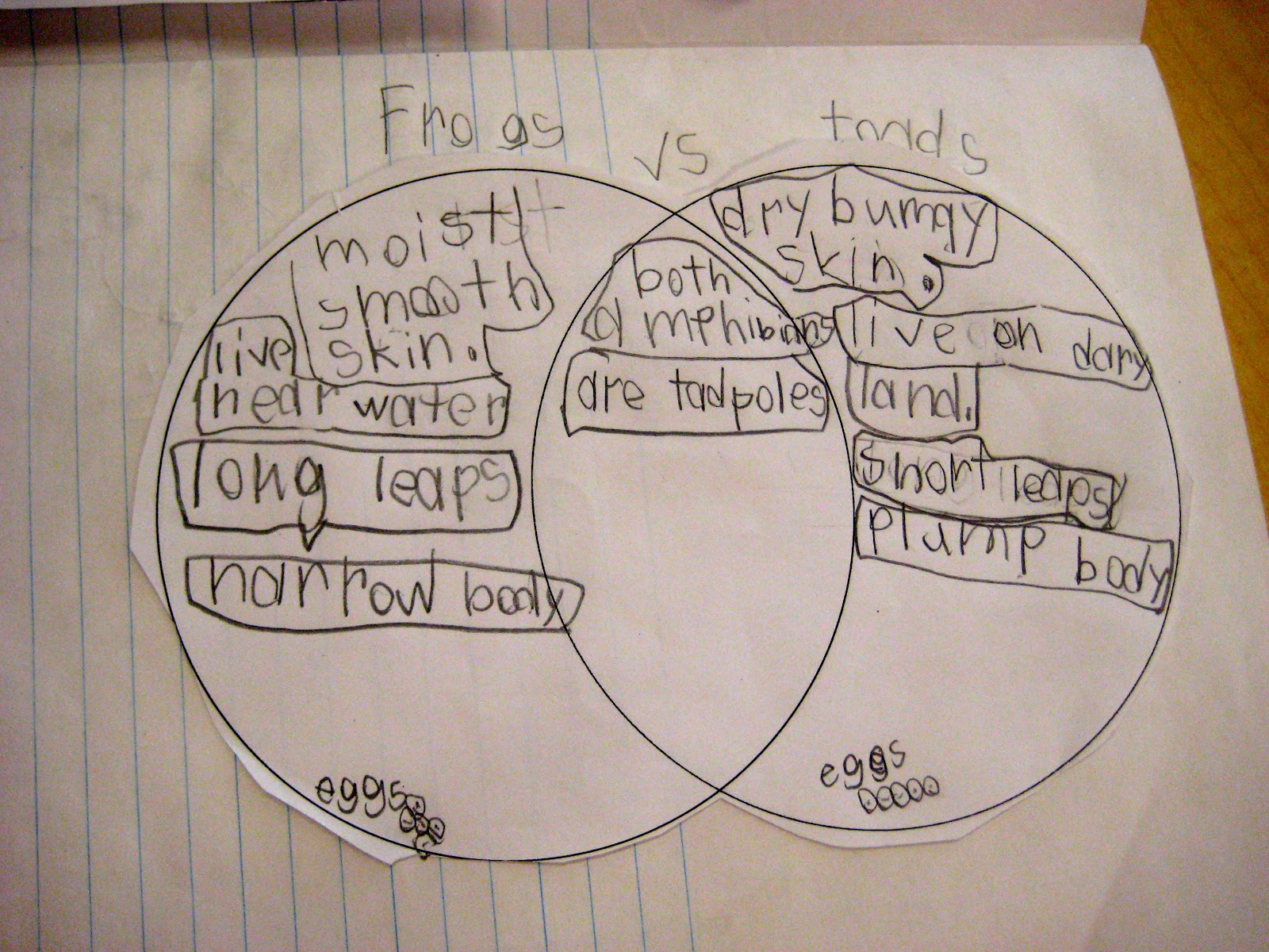 Frog And Toad Venn Diagram Carrier Infinity Wiring Ms Liebel 39s Classroom Science Journal Unit