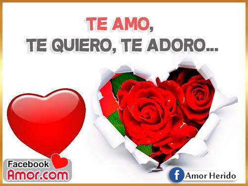 te amo te quiero