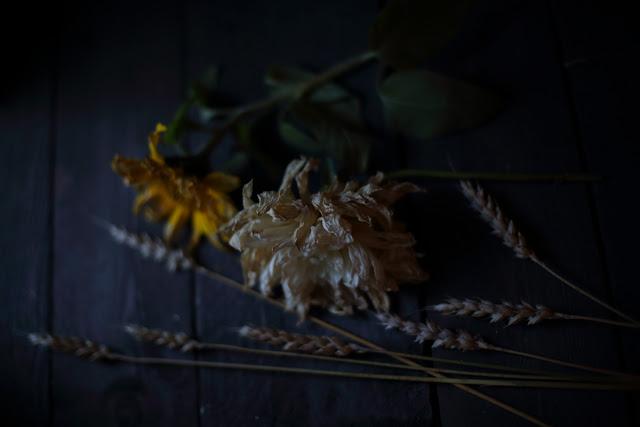 fading beauty, kuivakukkia, asetelma, still life flowers