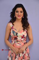 Actress Richa Panai Pos in Sleeveless Floral Long Dress at Rakshaka Batudu Movie Pre Release Function  0049.JPG