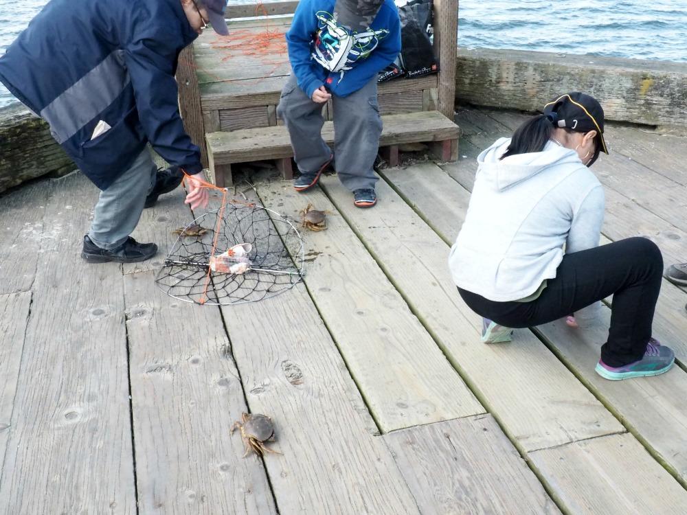 Crab fishing-Vancouver