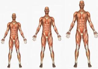 10 cách tự nhiên giúp tăng chiều cao