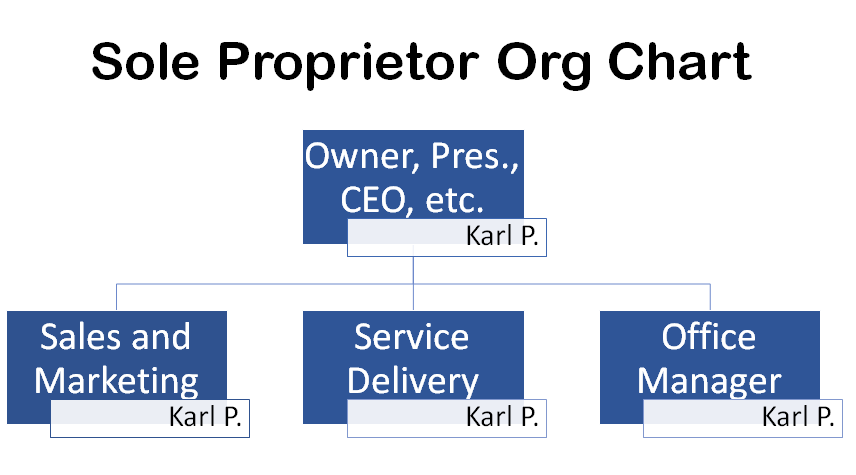 the ideal org chart for an i t  company
