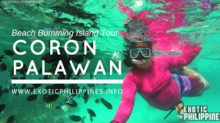 3 Coron Islands Beach Bumming Tour