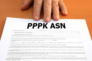 Inilah Mekanisme Pengangkatan PPPK Berdasarkan PP No.49 Tahun 2018 Bagi Honorer