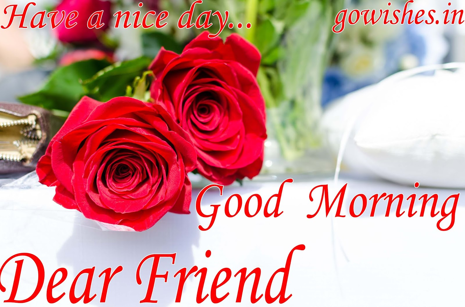 Best Good Morning Images Shayari Walpaper Gif Qutees