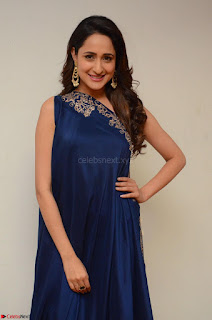 Pragya Jaiswal in beautiful Blue Gown Spicy Latest Pics February 2017 062.JPG