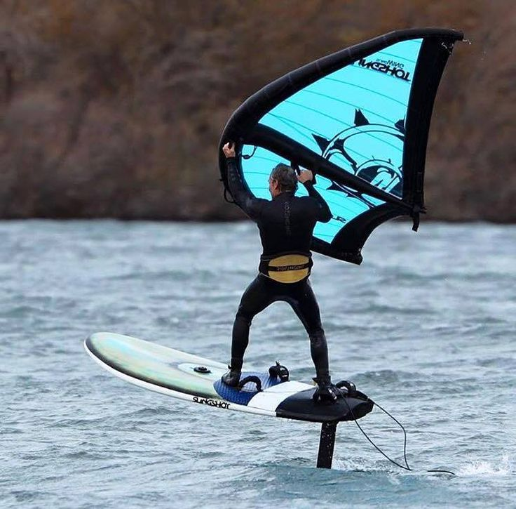 average joe windsurfer