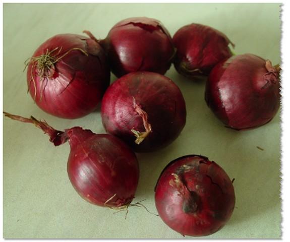 Sayuran Umbi