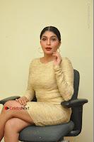 Actress Pooja Roshan Stills in Golden Short Dress at Box Movie Audio Launch  0033.JPG