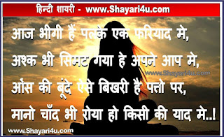 भीगी हैं पलके - Love Shayari for you in hindi