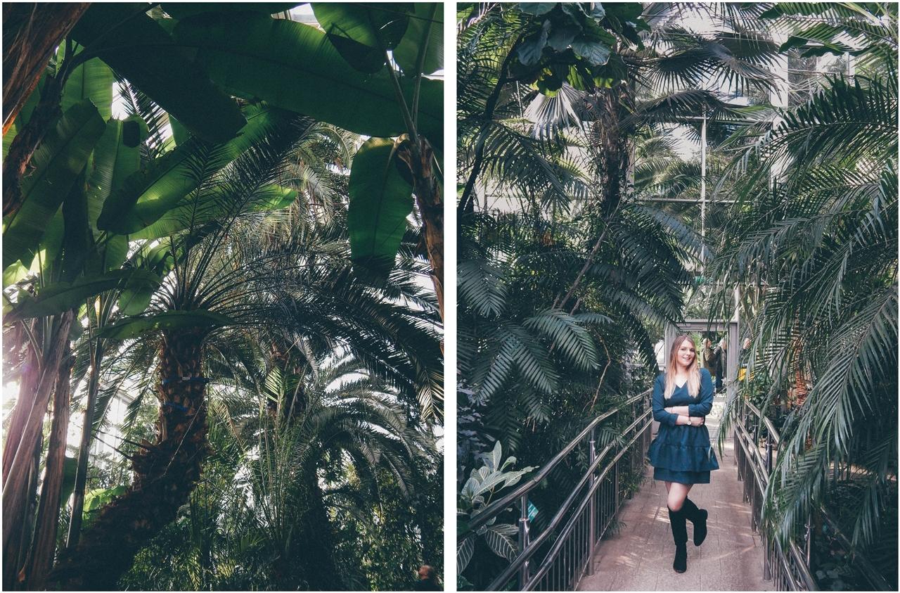 14 nagłówek mia gold zielona sukienka butelkowa zieleń z falbankami czarne muszkieterki za kolano deichmann blond fryzury modne 2018 ombre somblre daniel wellington sesja w palmiarni skórzany pasek palmy łódź