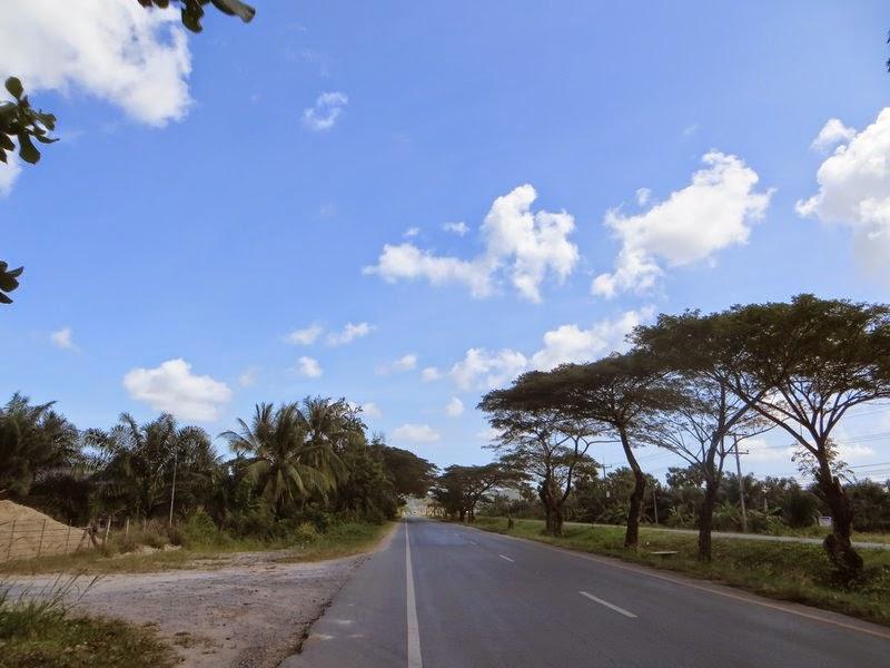 Деревья, дорога, облака