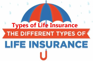 The Various Types of Life Insurance Made Easy