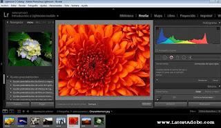 Adobe Photoshop Lightroom Classic CC 2019 Free Download