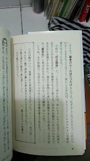 Novel Jepang