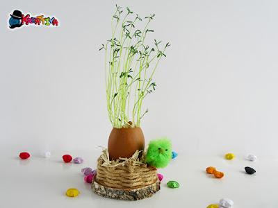 uovo decorativo con germogli di lenticchie