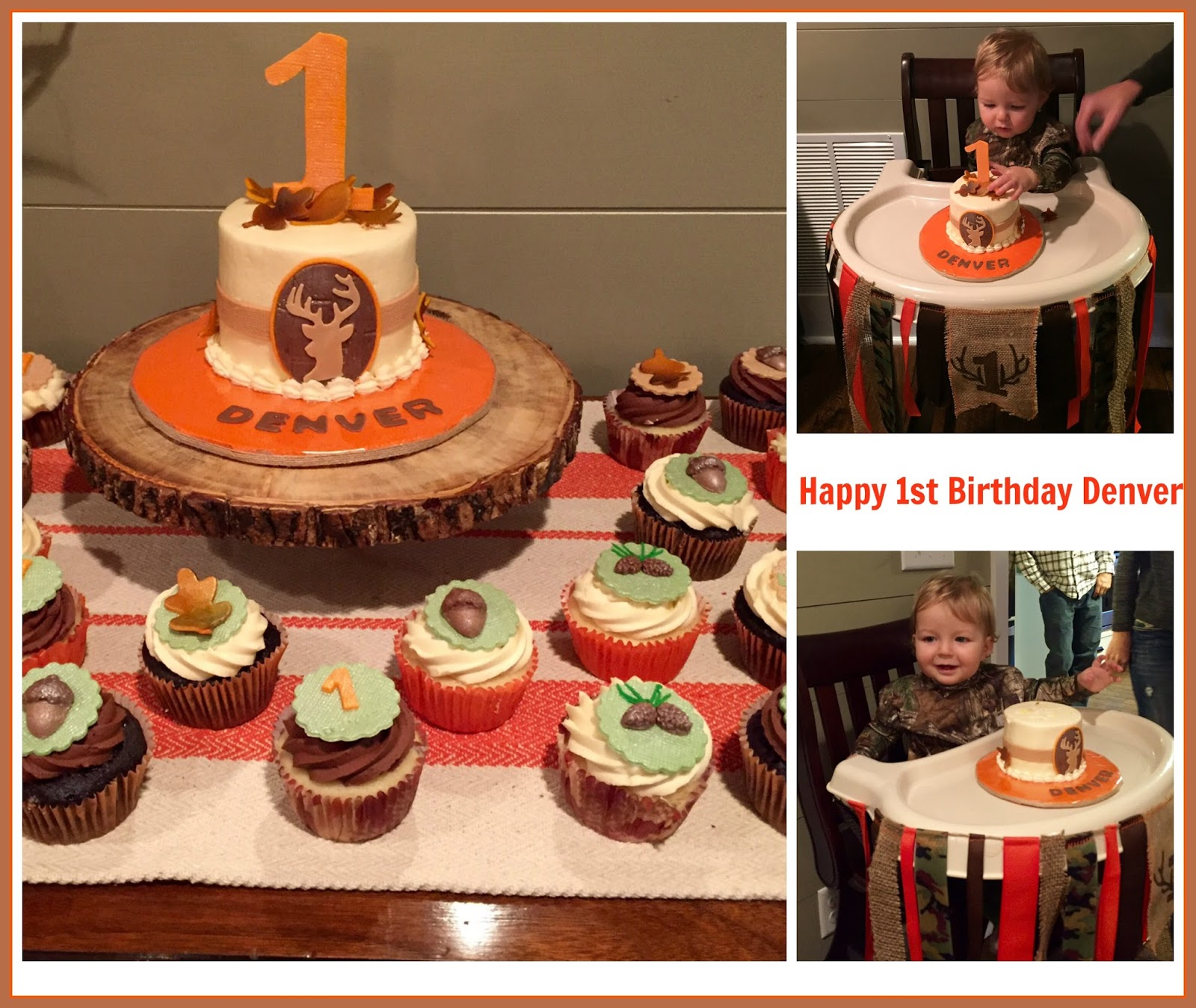 Cakes By Cindi Schultz Happy 1st Birthday Denver